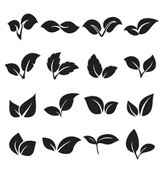 Two leaves icons vector