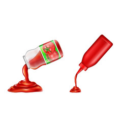 plastic bottle glass jar of ketchup in 3d vector image