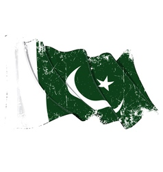 Pakistan Flag Grunge vector image