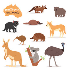Australian animals animalistic character in vector