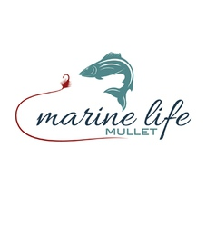 marine life with mullet vector image