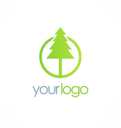 pine green tree logo vector image
