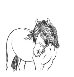 Sketch horse head with long mane covered eyes vector