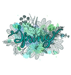 Hand lettering word Spring with hand drawn herbs vector image vector image