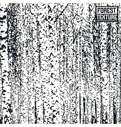 Birch forest texture vector image