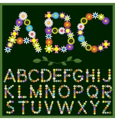 Flowers alphabet vector image vector image