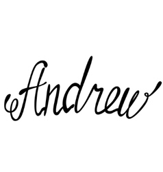 Andrew name lettering vector image vector image