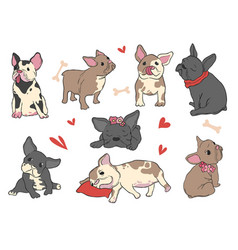 French bulldog funny pet puppy in different pose vector