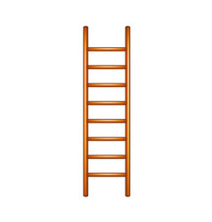 Ladder in wooden design vector