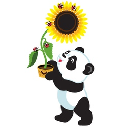 panda holding a sunflower vector image
