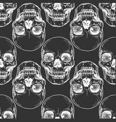 pattern with human skull vector image
