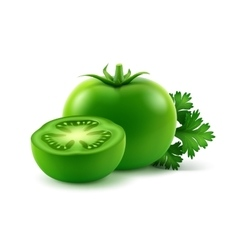 Ripe green fresh cut whole tomatoes with parsley vector