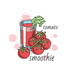 tomatoes smoothie made organic vegetables vector image