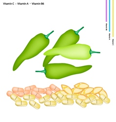 Sweet peppers with vitamin c a and b6 vector