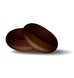 Two grains of roasted black coffee vector image
