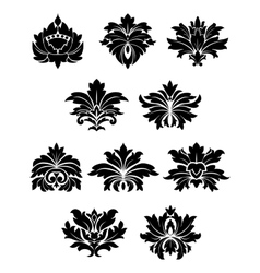 Lush black floral design elements vector image