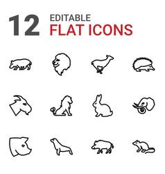 12 mammal icons vector