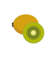 Flat of kiwi fruit vector