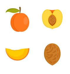 Peach tree slices fruit half icons set flat style vector