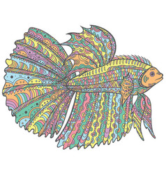 zentangle doodle betta fish - colorful version of vector image