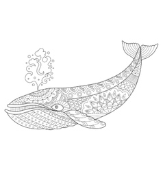 Whale coloring book vector image