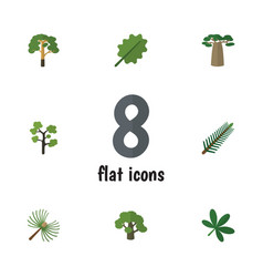 Flat icon natural set of spruce leaves alder vector