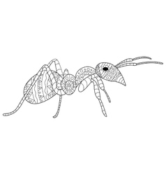Ant Coloring for adults vector image vector image