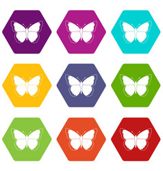 Butterfly icon set color hexahedron vector