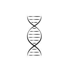 dna or chromosome abstract strand symbol set vector image