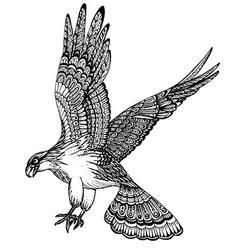 hand drawn of decorative eagle vector image