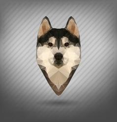 Husky polygon abstract triangle vector image
