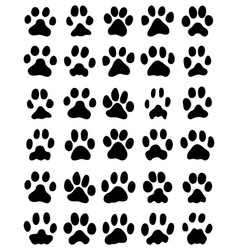 Print of cats paws vector