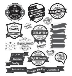 set vintage badges and design elements vector image