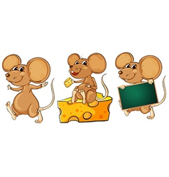 Three playful mice vector image