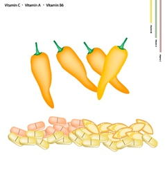 Yellow Sweet Peppers with Vitamin C A and B6 vector