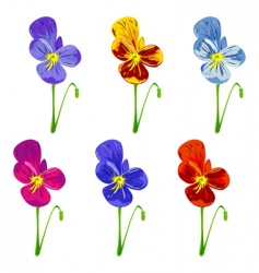 six colored pansies vector image vector image