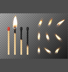 3d realistic match stick and different vector image