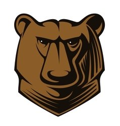 Big brown bear head vector