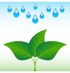 Drop leaf vector