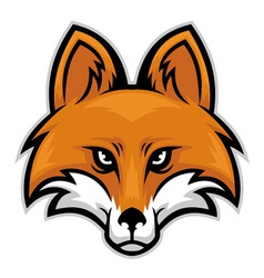 fox head vector image