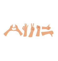 Hands human gestures set caucasian different vector