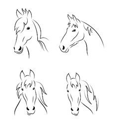 Set symbols outline head horse vector image