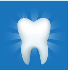 Tooth on a dark blue background vector image