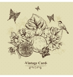 Vintage Greeting Card Tropical Fruit Flowers vector