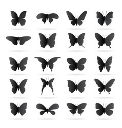 group of black butterfly on white background vector image