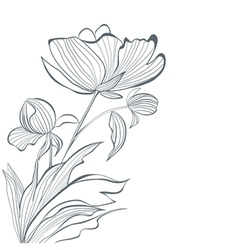Stylized Peony flowers vector image