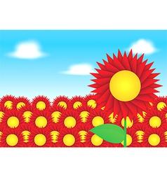 Red sun flower on blue sky background vector image