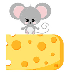 Cute baby mouse on piece cheese flat vector