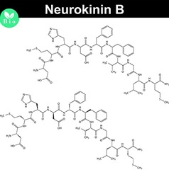 Neurokinin B chemical formula vector image