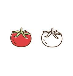 Organic tomato monochrome and colorful icon set vector